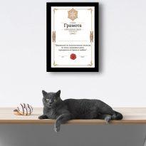 сертификат най-добър дядо в рамка